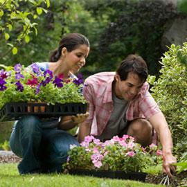 couple-gardening1