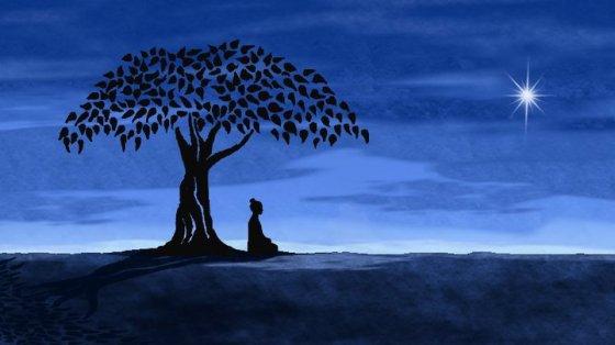 meditator siting under a tree woman blue night sky with star