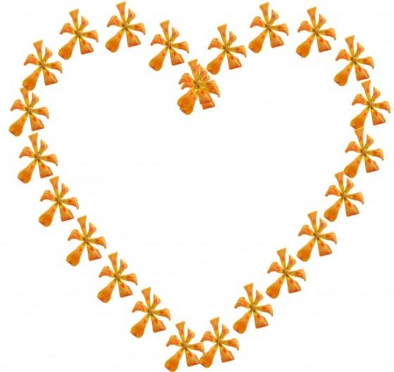 flower heart 7-1-15