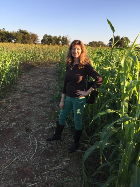 tanna in maize maze at pumpkin patch