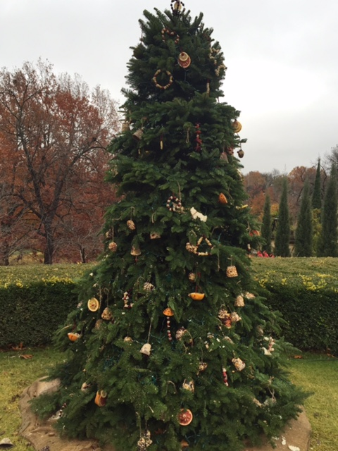christmas tree for birds philbrook 2015